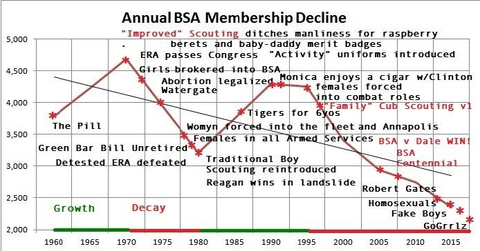 BSA Decline